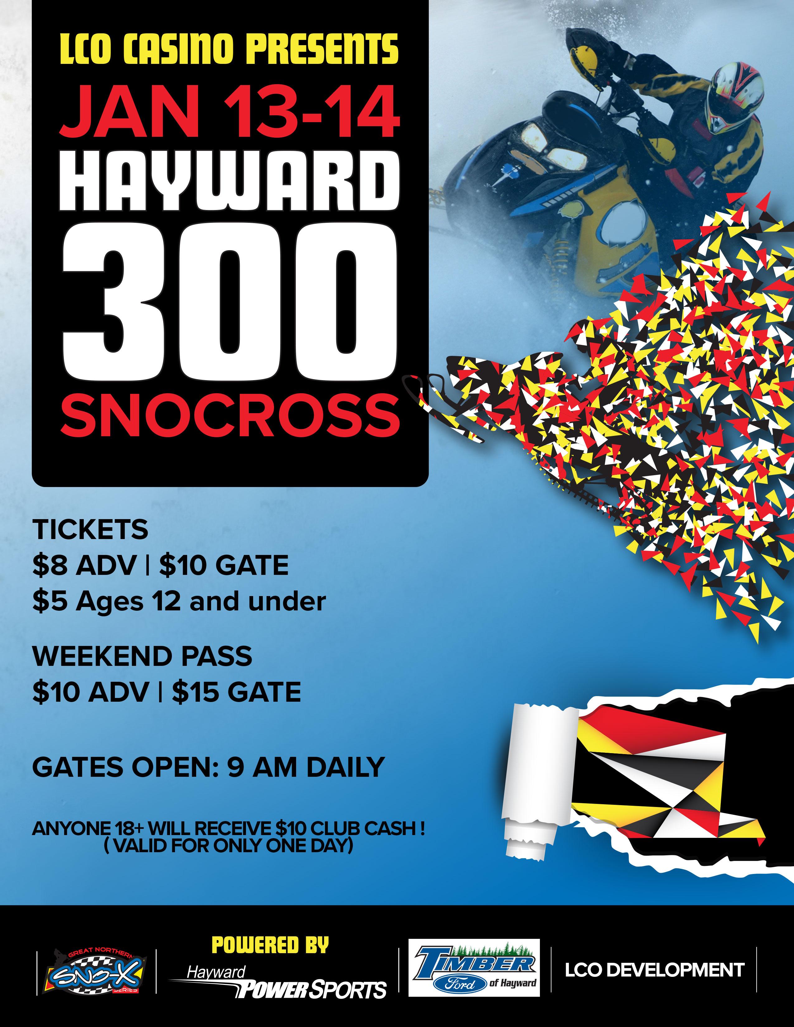 hayward300_new (1)